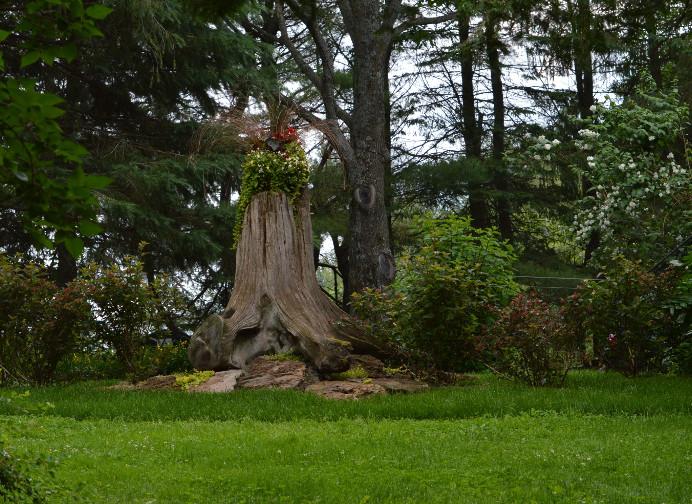 Paysage de jour - Chalets aux Crocollines - Extérieur - Lac Simon, Québec