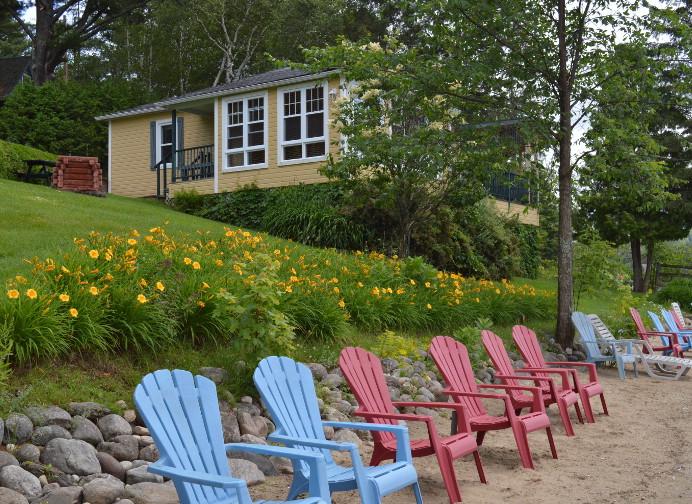 Passerin indigo vue de la plage - Chalets aux Crocollines -Chalet à louer - Lac Simon, Qc